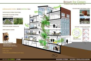 Joung Youn Park, Brown for Green
