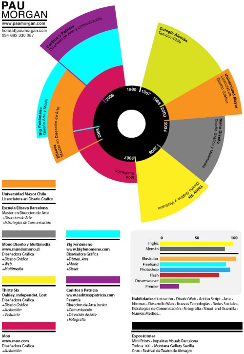 The Timeline/graph resume. Colorful, precise and interesting to read.